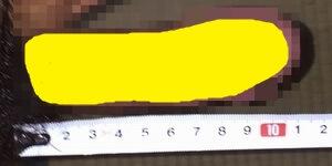 11.3-21