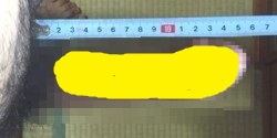 1581-2